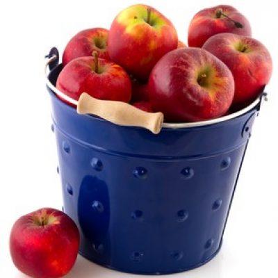 program-skolske-ovocie